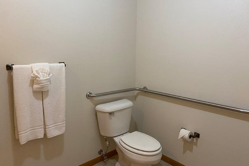 Handicap Accessible Bathroom